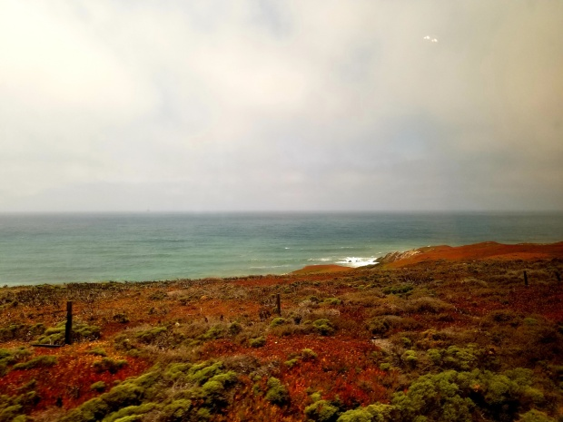 coast view 4