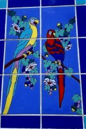 parrot catalina tile2