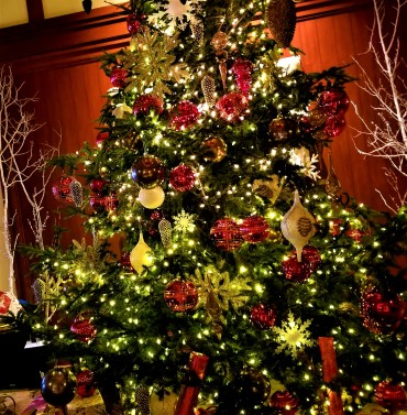 four seasons jh christmas tree