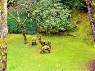butchart gardens topiary animals victoria bc