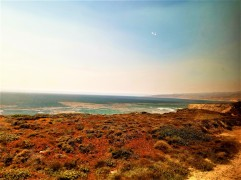 coast view 1