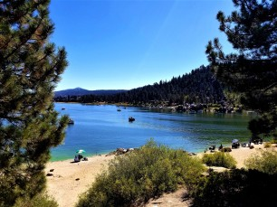 big bear fishing beach