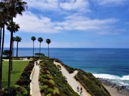 palm trees in beach breeze ritz laguna
